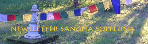 Newsletter Sangha Soleluna